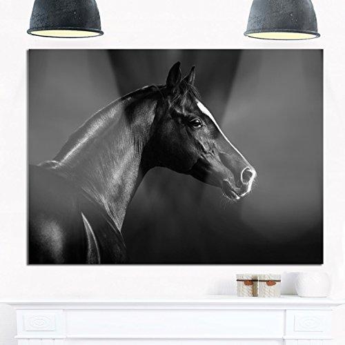 Designart MT13467-48-30 Black Arabian Horse Portrait - Extra Large Animal Metal Wall Art - 48x30,Black,48x30 by Design Art