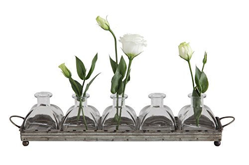 "16""L x 3.5""H Decorative Iron Tray with 5 Glass Vases"