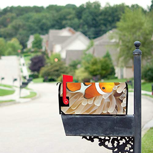 (YSWPNA Clown Fish Anemone and Clown Mailbox Covers Standard Size Original Magnetic Mail Cover Letter Post Box 21