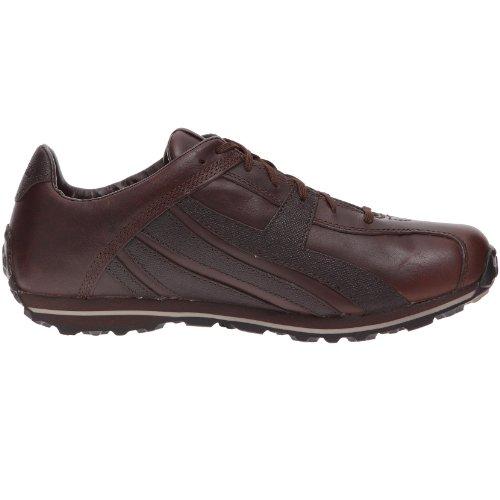 Marrone Uomo Sneakers Timberland Da marrone 8c1zpP