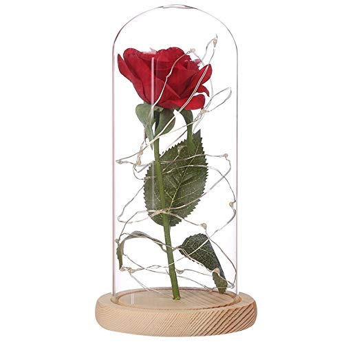 Creative Nights Lights,LTra5jCCun Nighting Lamps - Acrylic Case Cloth Rose Copper Wires LED Creative Night Light Wedding Valentine Day Gift - Beige