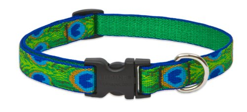 "LupinePet Originals 3/4"" Tail Feathers 9-14"" Adjustable Collar for Small Dogs"