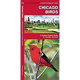 Chicago Birds