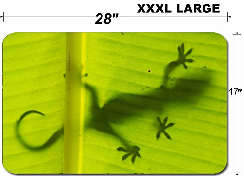 (Luxlady Large Table Mat Non-Slip Natural Rubber Desk Pads Silhouette of tokay gecko on a palm tree leaf Ang Thong National Marine Park Thailand IMAGE)