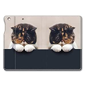 Brain114 iPad Mini Case - Fashion Design Leather iPad Mini Stand Case Cover Unhappy Cat Leather Folding Case Cover for iPad Air Mini