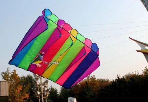 L.W. Eye Catching 8 Hole Single Line Control Parachute Parafoil Foil Kite Outdoor Beach Garden Playground Fun ()