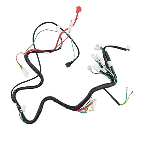 Magneto Assembly - Minireen GY6 125cc 150CC Wire Harness Wiring Assembly for 6 Pole Magneto GY6 150CC Scooter Moped