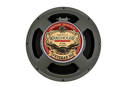 (Warehouse Guitar Speakers Veteran 30 12