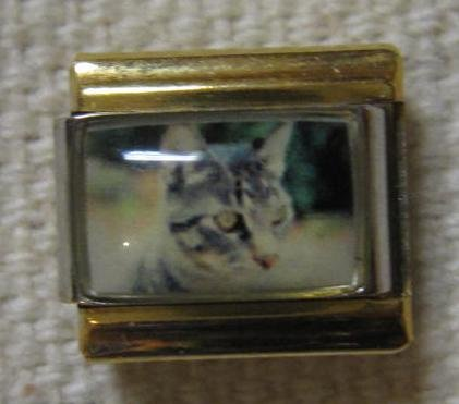 9mm Italian Charm. Gray Cat with Gold Colored Rails - House 9mm Italian Charm