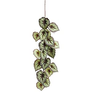 "43"" Hanging Silk Begonia Leaf Stem -Green/Purple (Pack of 12) 54"