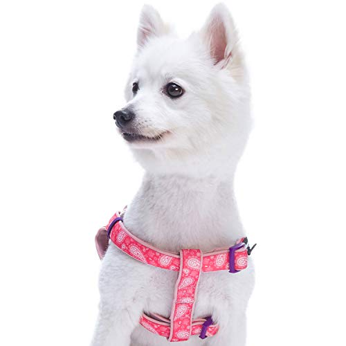 Blueberry Pet 5 Colors Soft & Comfy Step-in Paisley Flower Print Dog Harness, Chest Girth 20 - 26, Pink, Medium, Adjustable Harnesses for Dogs