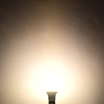 LED A21 Bulb, 14W (100W Equivalent), 2700K Warm White, Dimmable, 1500 Lumens, 100W LED Bulb, UL Listed, E26 Base, Damp Rated ...
