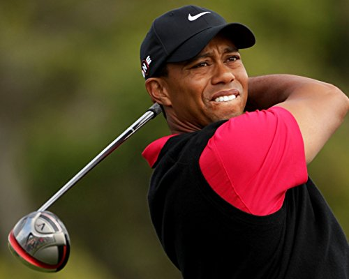 Tiger Woods 8 x 10 GLOSSY Photo Picture (Tiger Woods Photo)