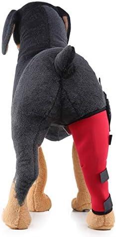 Rodilleras para patas traseras izquierdas para perros y perros para recuperaci/ón de lesiones Cobeky transpirable para pierna izquierda protecci/ón para mascotas L