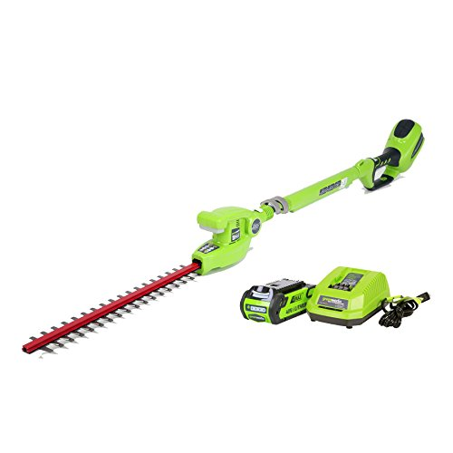 (GreenWorks 2272 7.25' 40V Cordless, 2.0 AH Battery Included 22272 Pole Hedge Trimmer, Electric Lime)