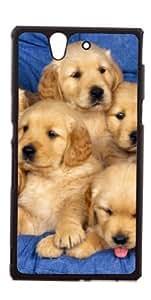 HeartCase Hard Case for Sony Xperia Z L36h ( Golden Retriever Dog Pet )