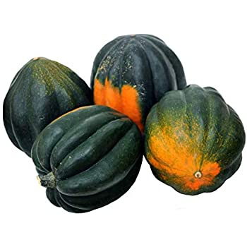 Winter Squash, Table King Bush Acorn - Squash Seeds