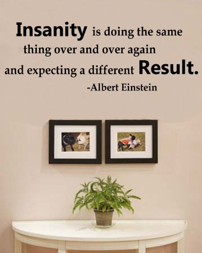Insanity is doing the same thing over and over again and expecting a different Result. Albert Einstein Vinyl Wall Decals Quotes Sayings Words Art Decor Lettering Vinyl Wall Art Inspirational Uplifting