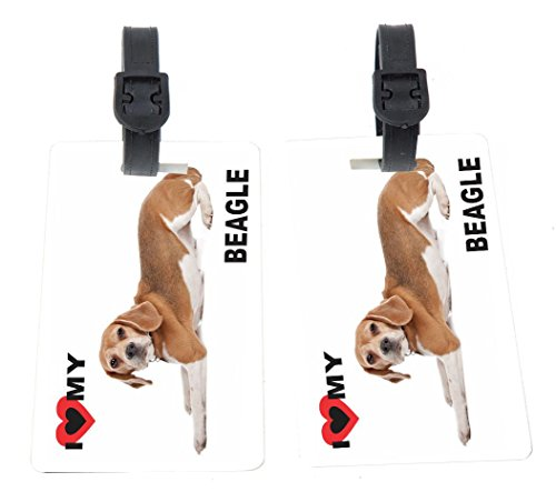 Rikki Knight I Love My Beagle Dog Design Premium Quality Plastic Flexi Luggage Identifier Tags with Strap Closure - Great for Travel Beagle Luggage Tag
