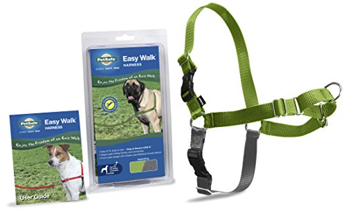 PetSafe Easy Walk Harness,  Extra Large, APPLE GREEN/GREY for Dogs (Large Apple Green)