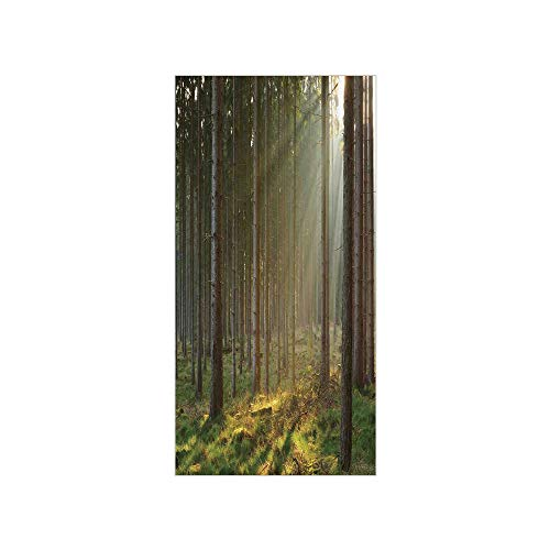 3D Decorative Film Privacy Window Film No Glue,Forest,Sunbeams Comes into Natural Misty Spruce Forest from The Right Top Picture Print,Tan and Brown,for Home&Office