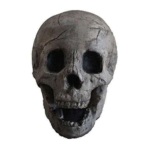 Myard Fireproof Imitated Human Fire Pit Skull Gas Log for NG, LP Wood Fireplace, Firepit, Campfire, Halloween Decor, BBQ (Qty 1, Aged Dark Grey Skull)