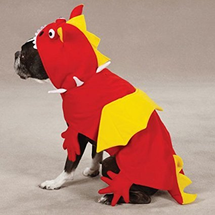 with Costumes for Dogs design