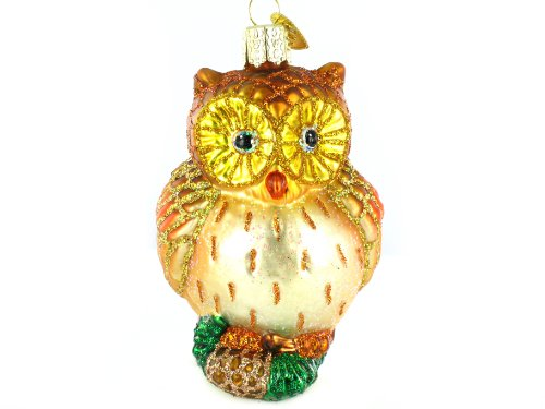 Old World Christmas Wide Eyed Owl Glass Ornament
