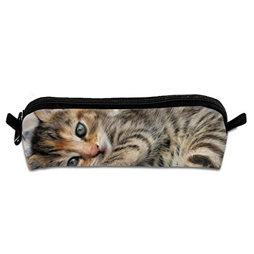 CQCJHHXH Babies, Cats, Cute, Eyes, Face, Feline, Kittens, POV Pencil Case Bag Stationery Pouch Bag for Kids,School Student ()