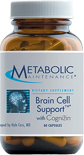 Metabolic Maintenance Brain Cell Support - Citicoline, DMAE, Phosphatidylserine + Ginkgo to Support Mood, Memory + Focus (60 Capsules)