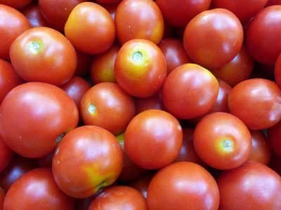David's Garden Seeds Tomato Cherry Amy's Sugar Gem (Red) 25 Organic Seeds