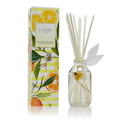 LOVSPA Coastal Citrus Scented Reed Diffuser Oil and Sticks Gift Set - Air Freshener for Bathroom, Bedroom Kitchen or Living Room - Best Housewarming Gift Idea for Women and Men - Made in The USA (Bathroom For Best Diffuser)