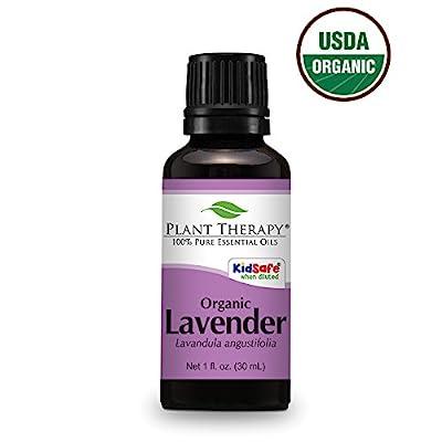 Plant Therapy Lavender Organic Essential Oil 100% Pure, Undiluted, Therapeutic Grade