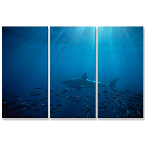 Canvas Wall Art Paintings For Home Decor White Shark In Blue Ocean Sea Picture 3 Pieces Panel Modern Giclee Framed Artwork The Pictures For Living Room Decoration Animal Photo Prints On Canvas