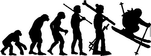 (Evolution Skier Sticker Decal in Black)