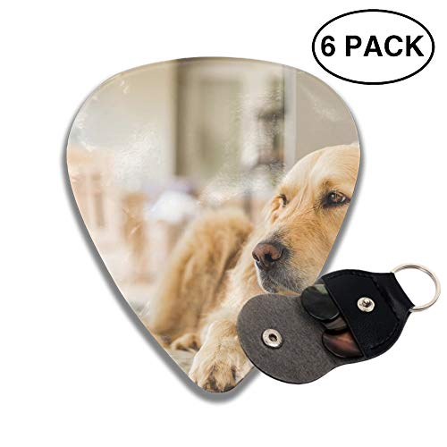 - 02-retriever-personality-dog-JfJacobsz Guitar Picks Various Rock Bands Collection 0.46mm 0.71mm And 0.96mm, 6pcs