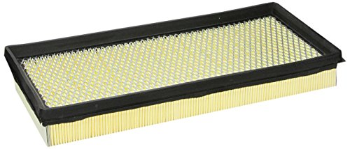 Motorcraft FA1046 Air Filter (Air Ford Bronco Motorcraft)