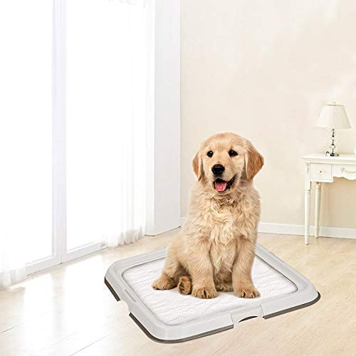 PAWISE Large Dog Training Pad Holder, Best Portable Puppy Trainer - Indoor Dog Potty - Puppy Pad Floor Tray, 23.6''X23.6''