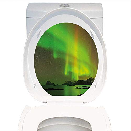 Design A Colorful Northern Lights Landscape in US - 6