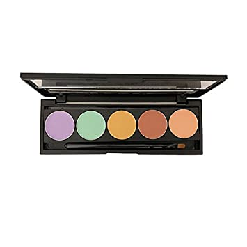 Dermaflage Color Corrector Palette, 5 Colors with Brush, Color Correcting Makeup, Concealer for Dark Circles, Acne, Scars – Makeup Magic from the Pros