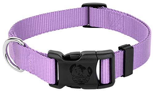 - Country Brook Petz | Vibrant 23 Color Selection | Deluxe Nylon Dog Collar (Medium, 3/4 Inch Wide, Lavender)