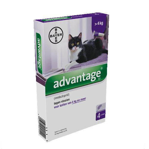 Advantage 80 Katze 4 Pipetten