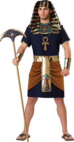 5d31048ce7b5 InCharacter Men's Egyptian Pharaoh Costume, Navy Brown, Large