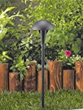 Vista Pro Path and Spread Landscape Lighting GR 42067 Black