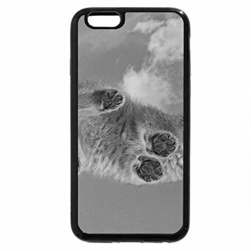 iPhone 6S Case, iPhone 6 Case (Black & White) - Cat on Glass