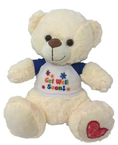 Nadia the Get Well Soon Teddy Bear 10 Inches (Get Well Flowers For Kids)