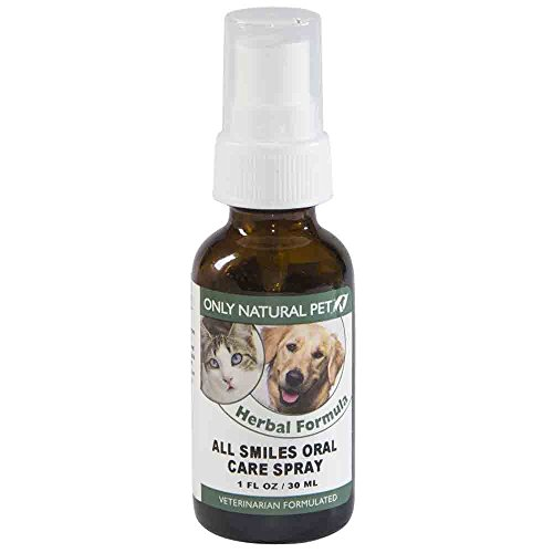 Only Natural Pet Oral Care Spray - All Smiles Peppermint Herbal Dental Spray - Freshens Breath, Removes Tartar and Prevents Plaque Buildup - 1-Ounce Spray - Spray Oral Care