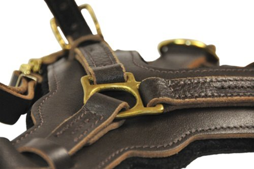 Dean and Tyler The Victory Solid Brass Hardware Dog Harness, Brown, Medium - Fits Girth Size: 23-Inch to 34-Inch by Dean & Tyler (Image #1)