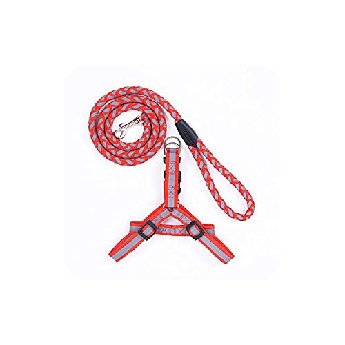 Harness and Leash Fully Adjustable No-Choke Dog Walking Harness with Rope Leash,Red,L ()