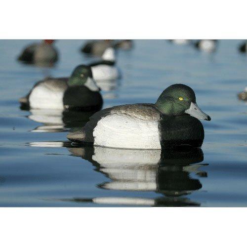 Avery Greenhead Over Size Bluebill Scaup Floating Duck Decoys Drake 6pk